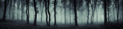 Fototapeta Ciemna panorama lasu fantasy krajobrazu