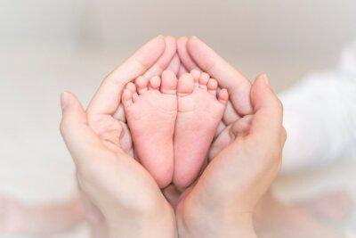 Fototapeta Close up of newborn baby feet on female hands