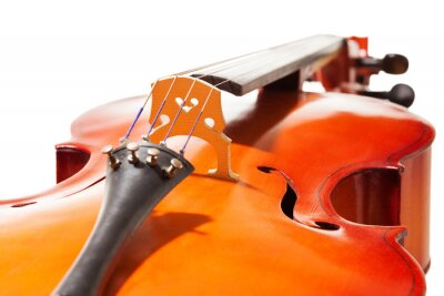 Fototapeta Close-up view of cello body on white background