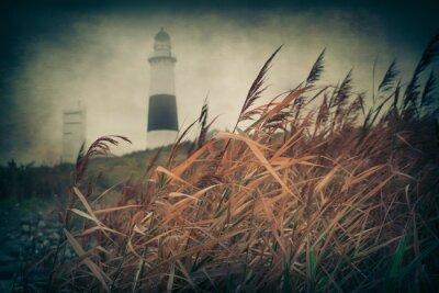 Fototapeta Coastal wysoka trawa, latarnia morska z rocznika teksturowane efekt