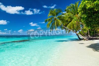Fototapeta Coco palmy na plaży raju