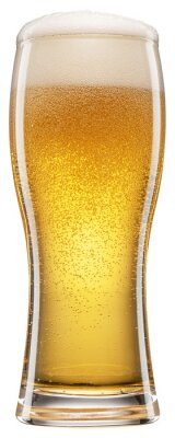 Fototapeta Cold glass of beer with white foam and gas bubbles inside. File contains clipping path.