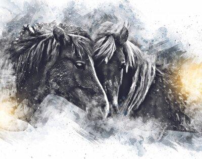 Fototapeta Colorful horse art illustration grunge painting
