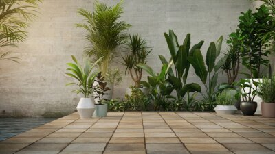 Fototapeta Concrete wall and Plant in pot on stone flooring tile, background. Place for your product, text. 3d render.
