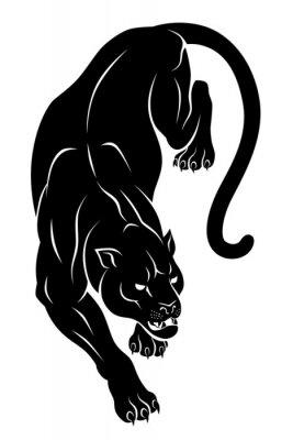 Fototapeta Crouching panther