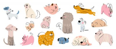 Fototapeta Cute dogs doodle vector set. Cartoon dog or puppy characters design collection with flat color in different poses. Set of funny pet animals isolated on white background.