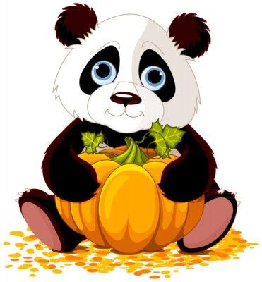 Fototapeta Cute panda