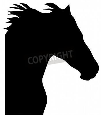 Fototapeta czarna sylwetka z Serie zwierząt, koń