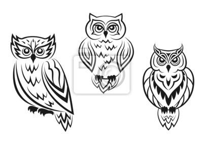 Czarne I Białe Tatuaże Sowa Ptak Fototapety Redro