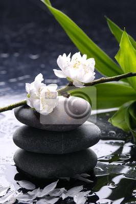 Czarne kamienie do masażu z cherry, płatek, na krople wody