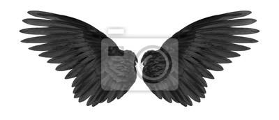 Fototapeta Czarne skrzydła na białym tle