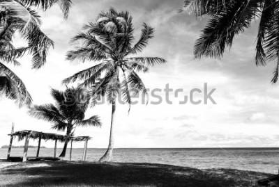 Fototapeta Czarno-biały obraz tropikalnej plaży