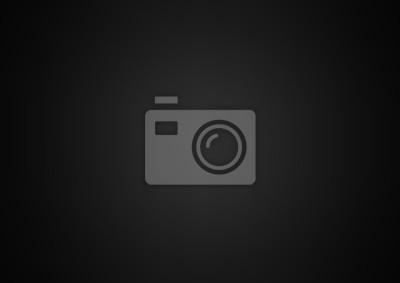 Fototapeta Czarny abstrakcyjne tła - wektor