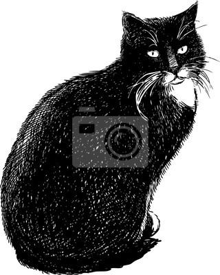 Fototapeta Czarny Kot Dom Na Wymiar Czarny Noga Charakter Redropl