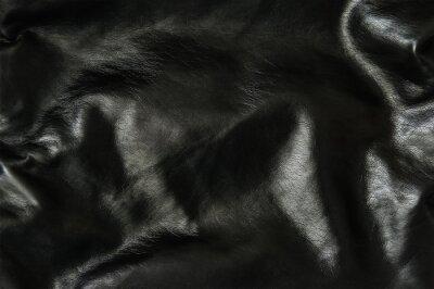 Fototapeta Czarnym tle skóry