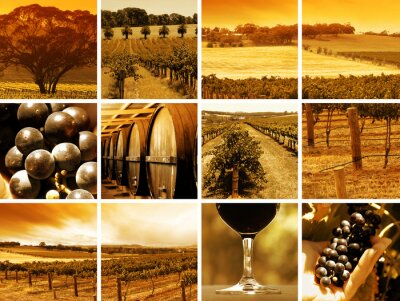 Fototapeta Czas na degustację wina w winiarni