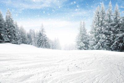 Fototapeta czas zimowy