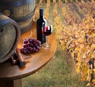 Fototapeta czerwone wino z beczki w winnicy