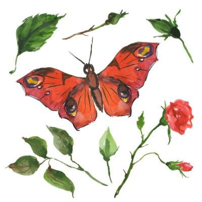 Fototapeta czerwony motyl i kwiaty