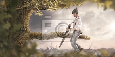 Fototapeta Człowiek piłuje na gałęzi, na której siedzi