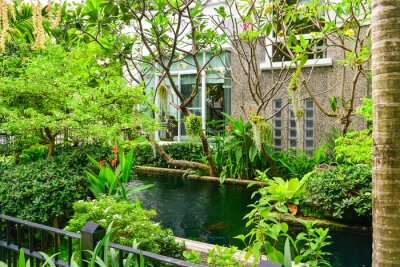 Fototapeta Dekoracyjne staw z roślin ozdobnych i zielony ogród