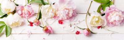 Fototapeta Delicate white pink peony with petals flowers and white ribbon on wooden board. Overhead top view, flat lay. Copy space.