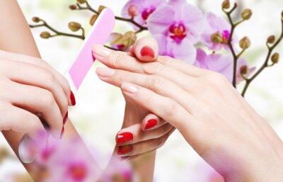 Fototapeta Delikatna pielęgnacja paznokci w salonie piękności