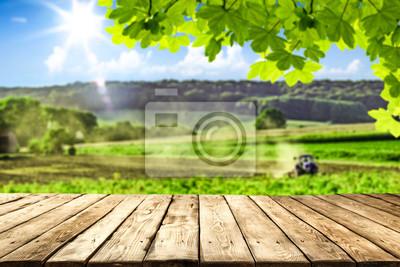Fototapeta desk of free space and farm background.