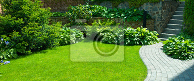 Fototapeta Detail of a botanical garden.