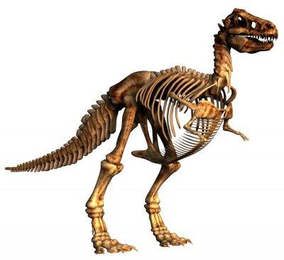 Fototapeta dinozaur tirannosaurus
