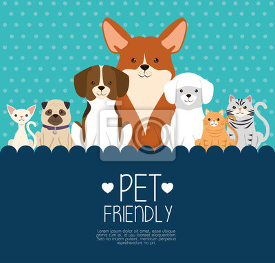 Fototapeta dogs and cats pets friendly vector illustration design