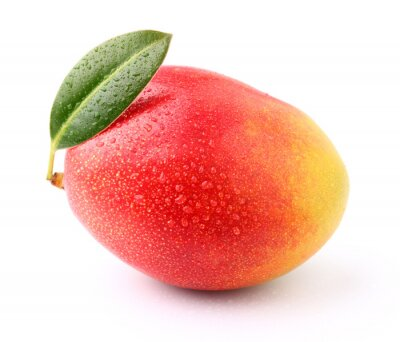 Fototapeta Dojrzałe mango z kropli wody