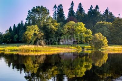 Fototapeta Dom w lesie, przy Killykeen Forest Park w hrabstwie Cavan Irlandii.