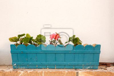 Donice powieszony na kolorowe ściany i okna pięknych starych domów w Bozcaada
