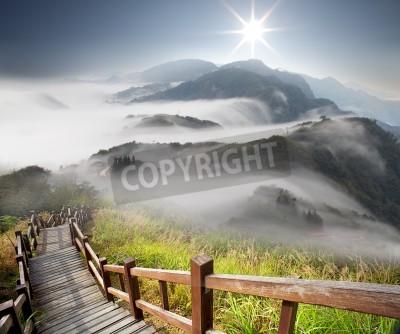 Fototapeta Dramatyczne chmury z góry i drzewa