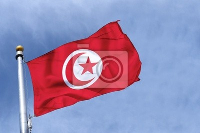 Fototapeta drapeau Tunisie