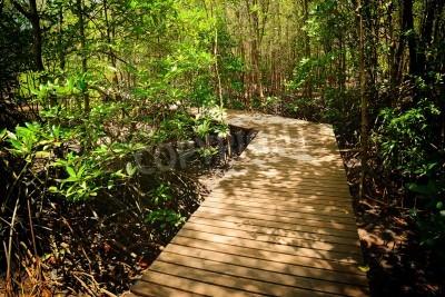Fototapeta Drewniany most w lesie