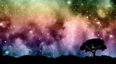 Fototapeta Droga mleczna nocne niebo z drzew sylwetki