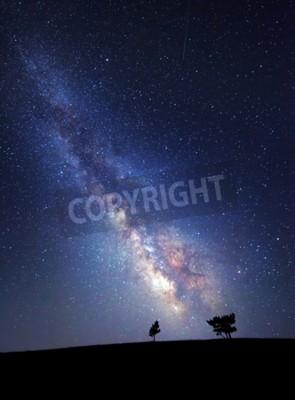 Fototapeta Droga Mleczna. Piękne lato nocne niebo z gwiazdami. Tło.