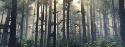 Fototapeta Drzewa we mgle. Dym w lesie rano. Mglisty poranek wśród drzew. Renderowania 3D