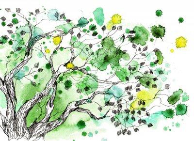 Fototapeta Drzewo