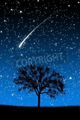 Fototapeta Drzewo pod Gwiazdy o spadających gwiazd na nocnym tle