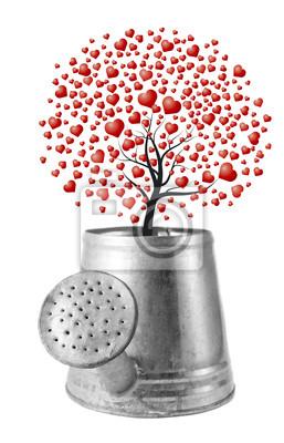 Drzewo Serce w wodzie może na krześle