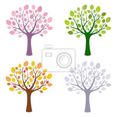 Drzewo w na sezony