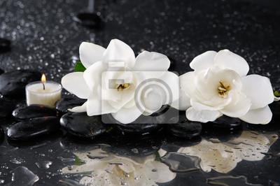 Dwa gardenia z świeca na czarnym Kamyczki