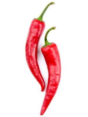 Fototapeta Dwie czerwone papryki chili samodzielnie na biały