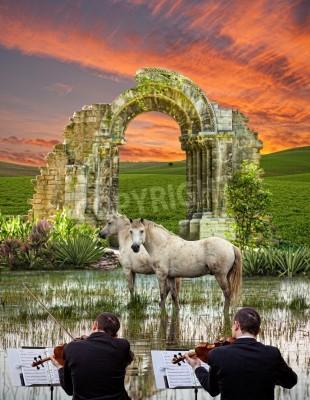 Fototapeta Dwóch skrzypków i konie w bagnie