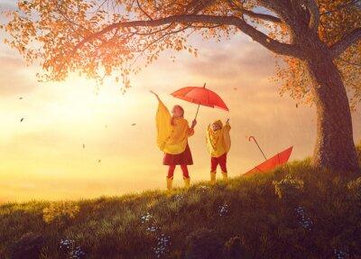 Fototapeta Dzieci pod jesiennym prysznicem
