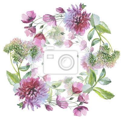 Dziki kwiat chryzantemy wieniec w stylu akwarela izolowane. Pełna nazwa tego zioła: chryzantema, dalia. Aquarelle kwiaty mogą być wykorzystane do tła, tekstury, wzór, ramki lub obramowanie.
