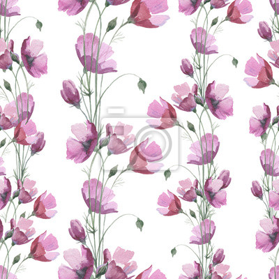 Dziki kwiat maku deseń w stylu akwareli. Pełna nazwa tego zioła: Papaver, mak, mak. Aquarelle kwiat dla tła, tekstury, wzór, ramki lub obramowanie.